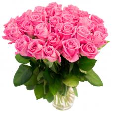 Роза розовая 26
