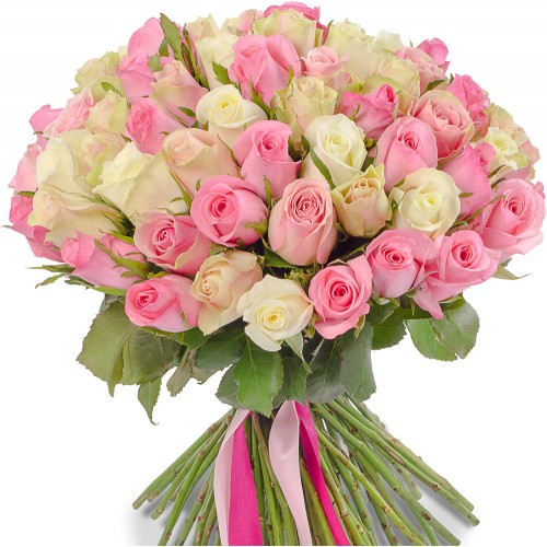 Роза розовая и белая 101 (Эквадор)