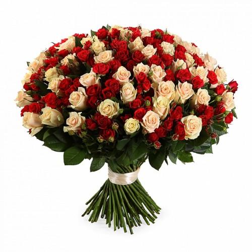 Роза красная и белая 101