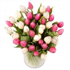 Тюльпаны 35