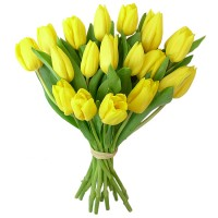 Тюльпан желтый 15