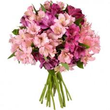 Альстромерия розовая с сиреневой