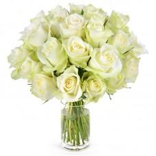 Роза белая №15