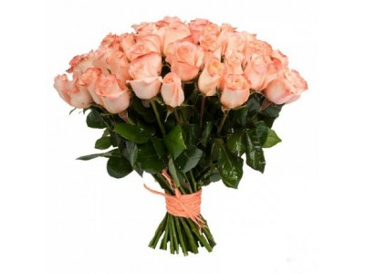Роза розовая 41
