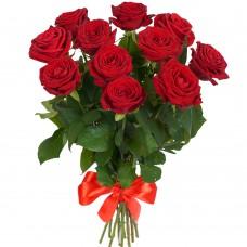 Роза красная 11