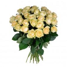 Роза персиковая 25