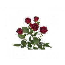 Роза кустовая красная