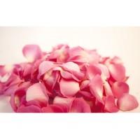 Лепестки розовые