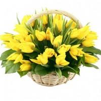 Желтые тюльпаны в корзине