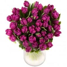 Тюльпан №39