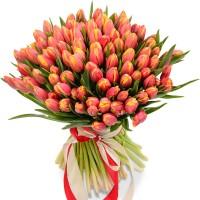 Тюльпан №100