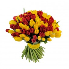 Тюльпаны красные с желтыми 101