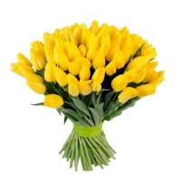 Тюльпан желтый 65