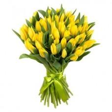 Тюльпан желтый 25