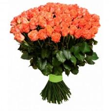 Роза 181