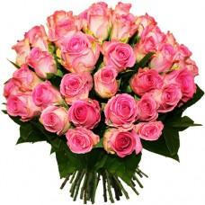 Роза розовая 51
