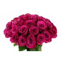 Роза ярко-розовая 51