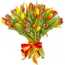 Тюльпан №55