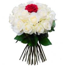Роза белая с красной