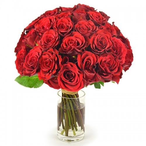 Роза красная №15