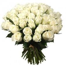 Роза белая 35