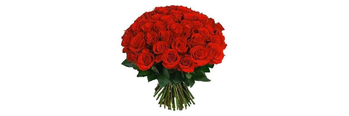 роза красная с доставкой