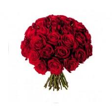 Роза красная 35