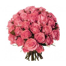 Роза розовая 35