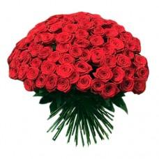 Роза красная (Россия)