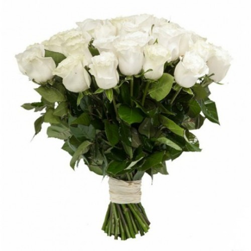Роза белая 41