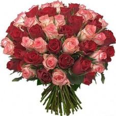 Роза розовая и красная 55